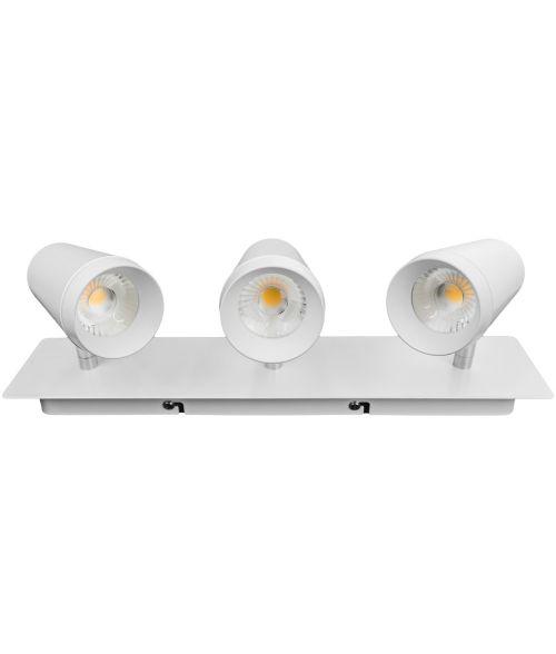 LED Spot Light Vitrina 30W - Rectangular
